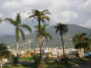 320px avenida de las palmas fusagasugá