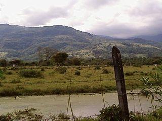 320px acacias paisaje