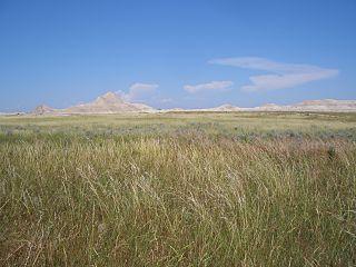 320px oglala national grassland