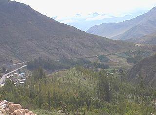 320px valle del rio estique