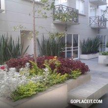 Renta de departamento en jard n balbuena venustiano for Casas en renta jardin balbuena venustiano carranza